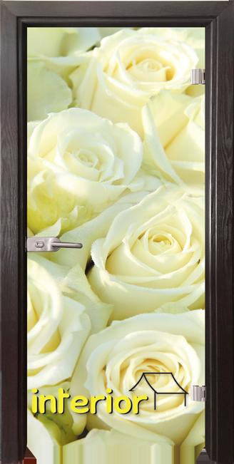Стъклена интериорна врата модел Print G 13-6 с каса Сив кестен